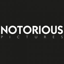 NOTORIOUS PICTURES – Analisi fondamentale